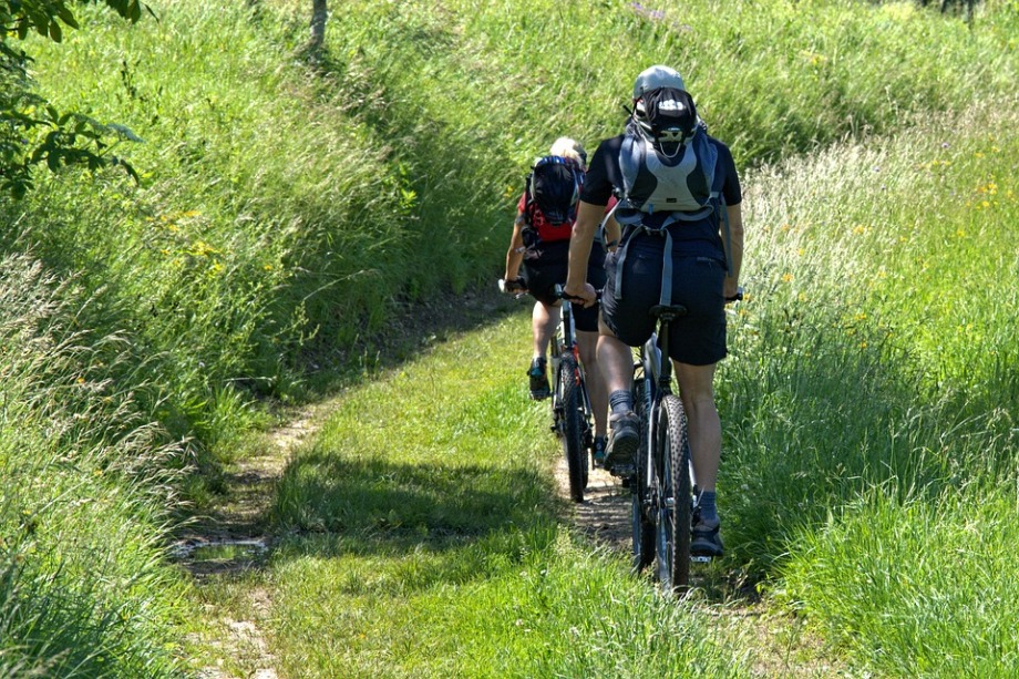 cyclists-1445700_960_720