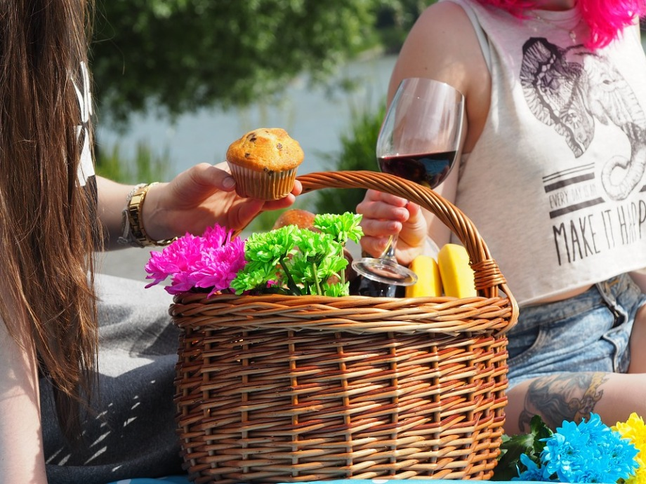 picnic-1456955_960_720