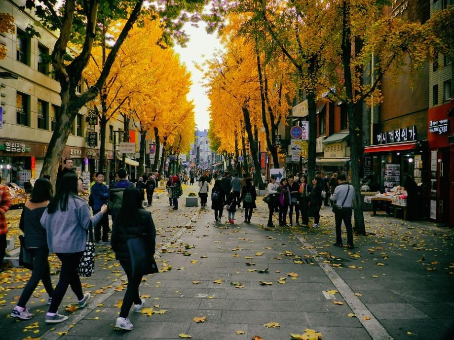 autumn-1511737_960_720