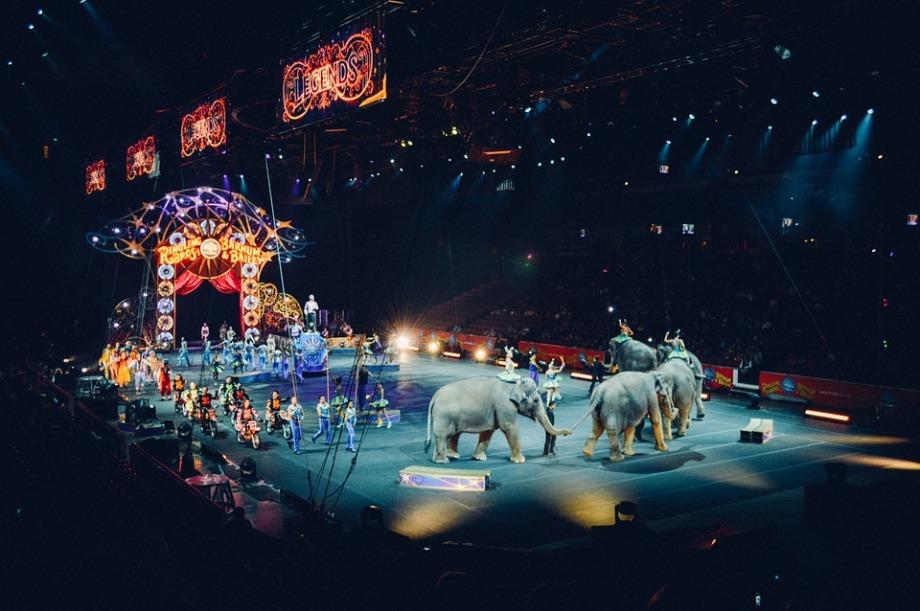 circus-828680_960_720