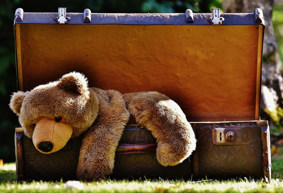 luggage-1650174_960_720.jpg